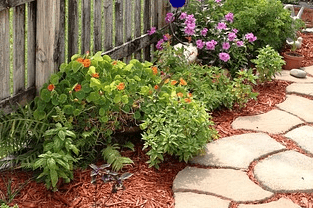 Landscaping Services in Croydon